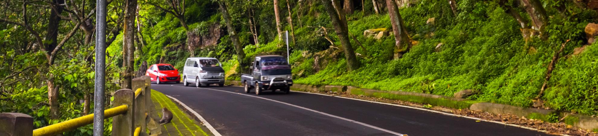 Aller à Bali en voiture