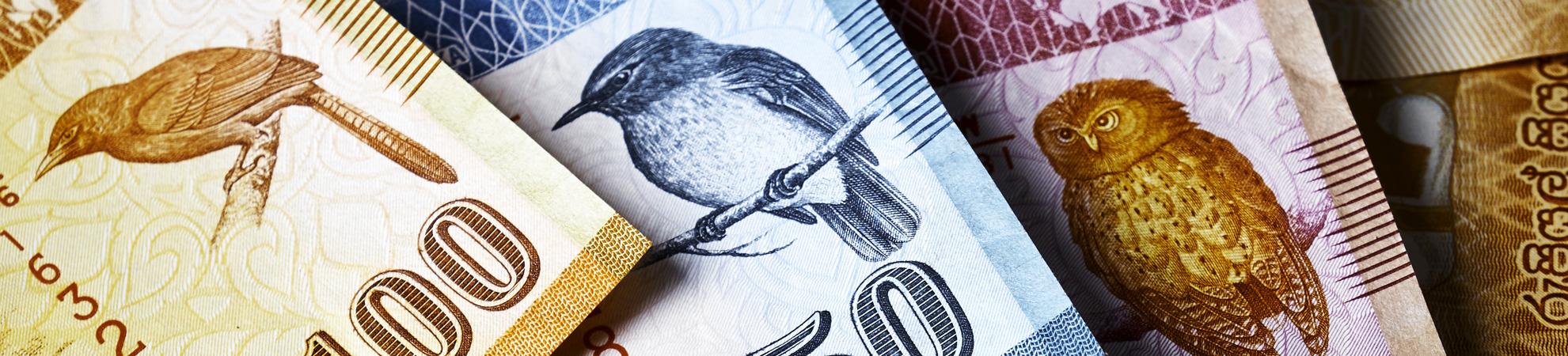 Bien organiser son argent avant son circuit au Sri Lanka