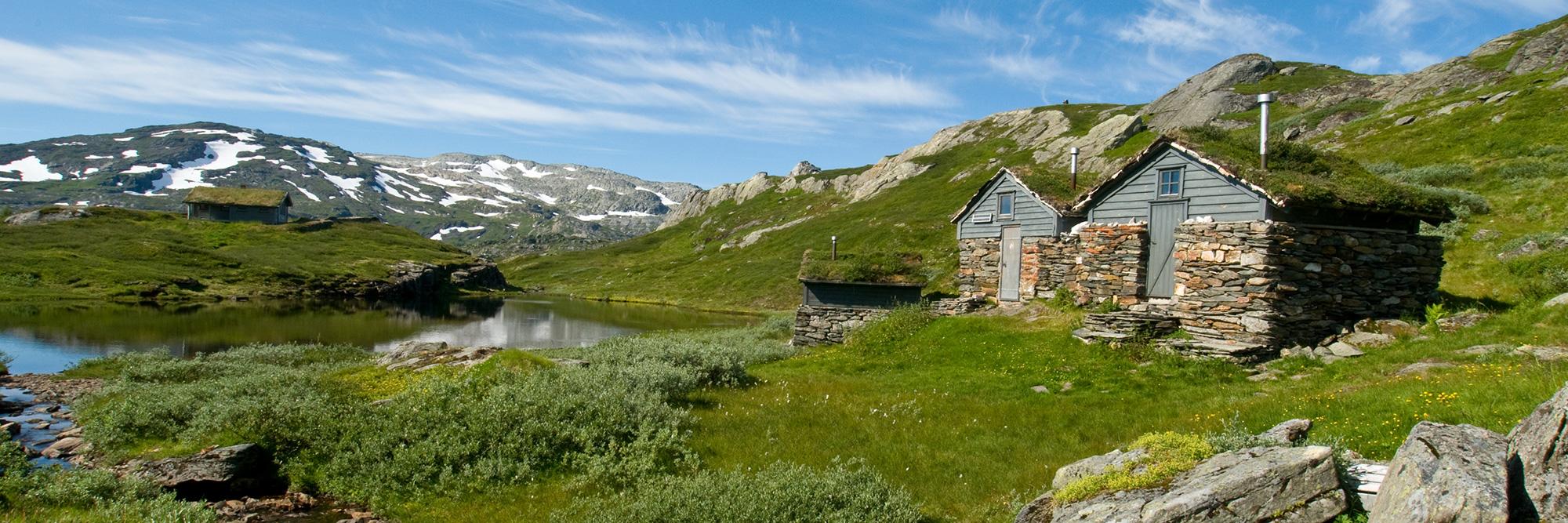 Parc ou plateau de Hardangervidda