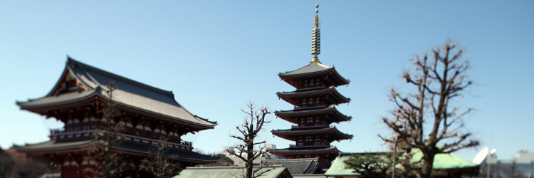 Half-day tour of the Asakusa district