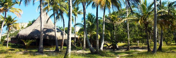 Excursion sur l'île de Baru