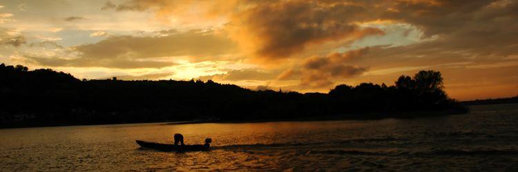 Tour en bateau sur les bayous