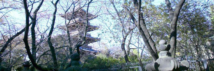 Matsuyama-jô