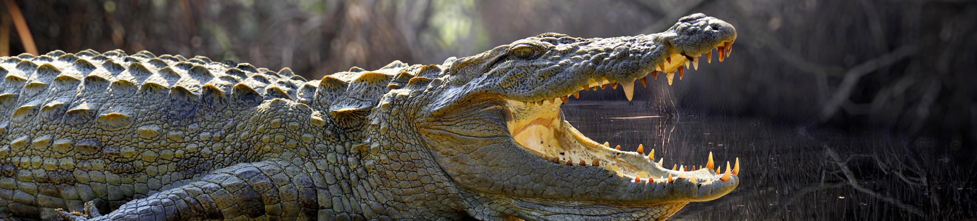 Les risques naturels au Sri Lanka