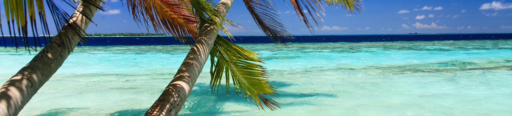 Que faire aux Seychelles