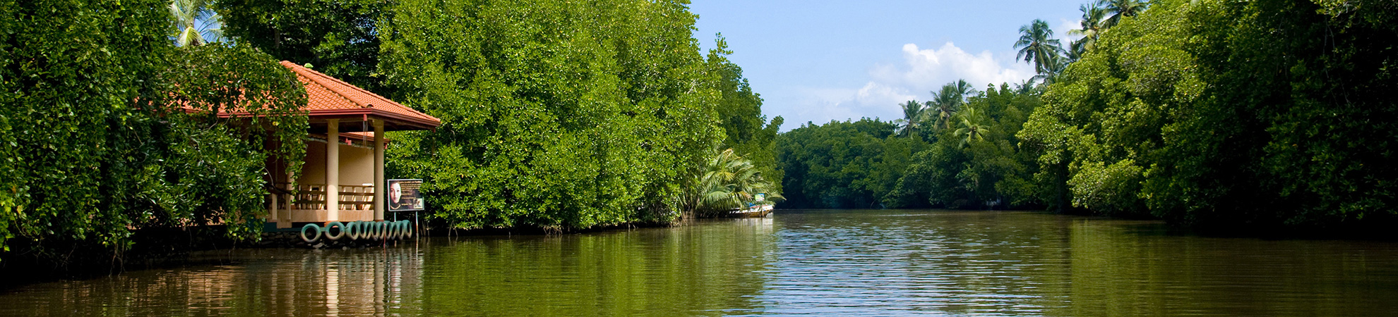 Balade en bateau sur la rivière Madu