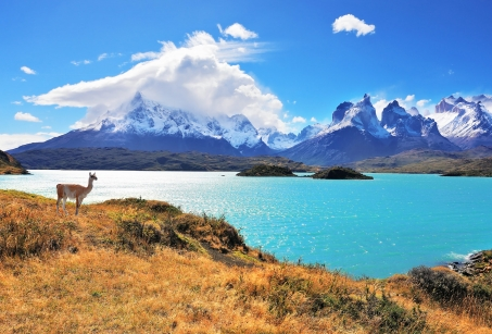 Splendeurs naturelles d'Argentine et du Chili