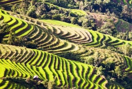 Chine : Le Yunnan au Sud des Nuages