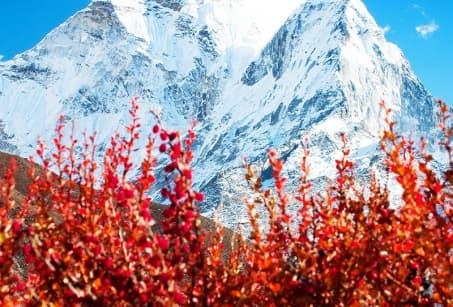 Népal : Panorama sur les Annapurnas