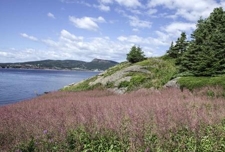 Au Québec, sur les rives du Saint-Laurent