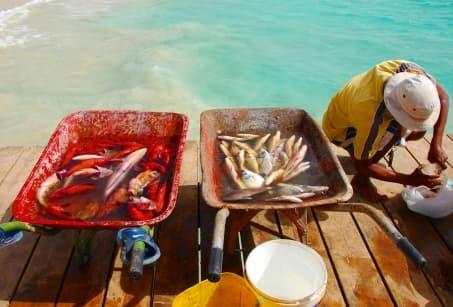 Cap Vert authentique, archipel métisse