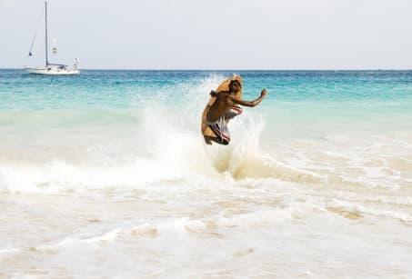 Sport de glisse : plein vent sur Sal !