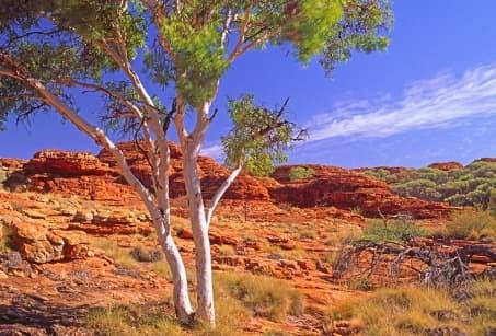 Mon aventure dans le Kimberley