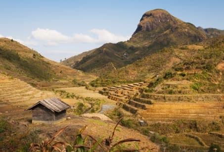 Madagascar : Traversée des Hautes Terres