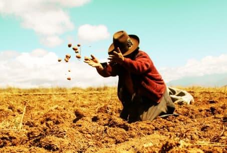 Le Pérou chez l'habitant