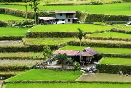 Le nord de Luzon, de villages en rizières