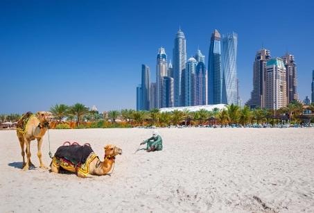 Exposition Universelle et découverte des Emirats
