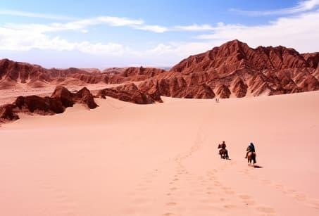 Le désert d'Atacama en liberté