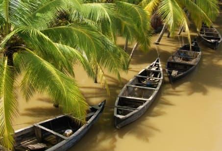 Le Kerala, au pays des cocotiers