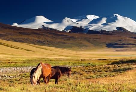 Steppes mongoles et désert de Gobi