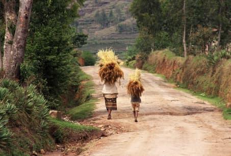 Sur les routes du Boina