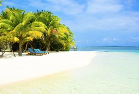 Zanzibar, la route des épices