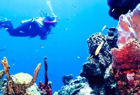 Belize et sa magnifique barrière de corail