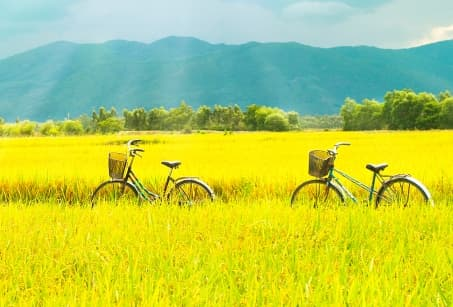 Périple dans le nord à vélo