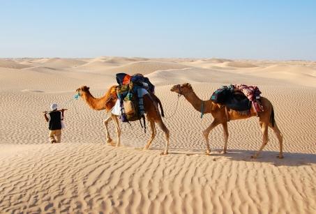 Iran & Oman : Merveilles du Golfe Persique