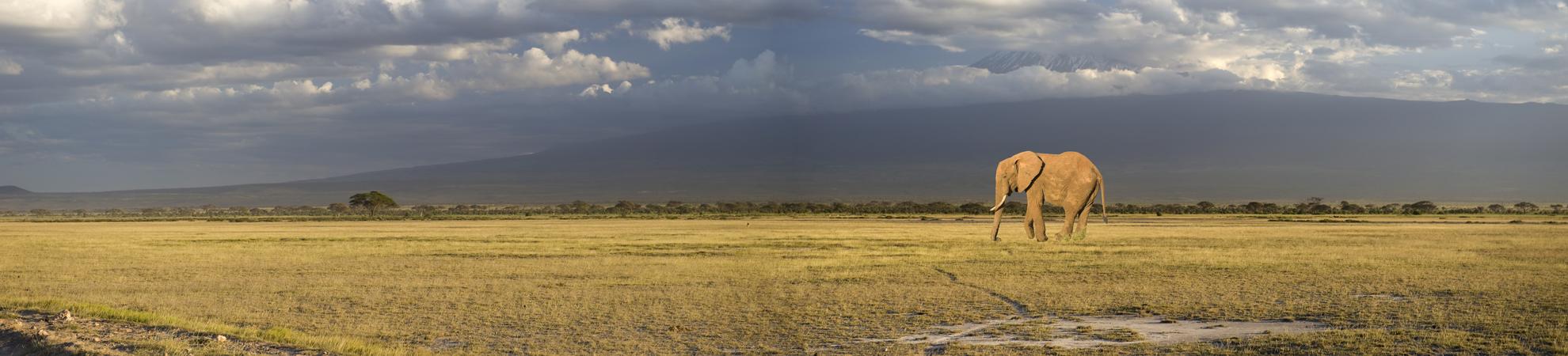 Sejour Kenya