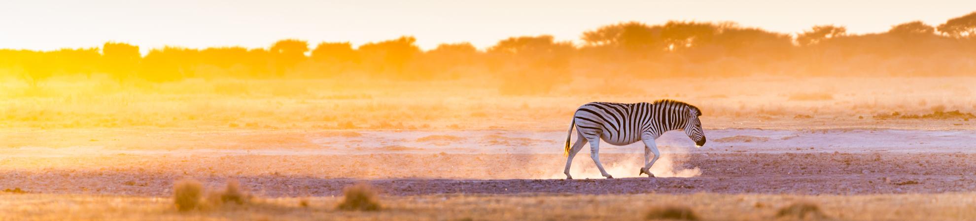 Circuit Afrique du sud