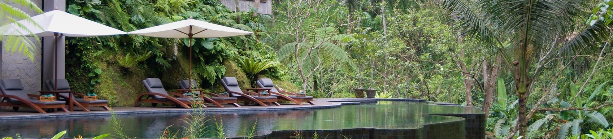 piscine à débordement dans la forêt