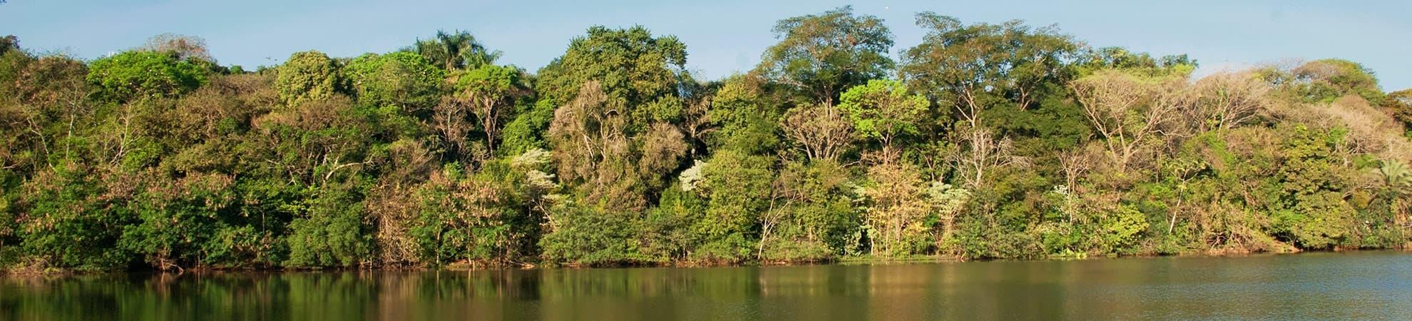 Voyage Le Nord du Brésil