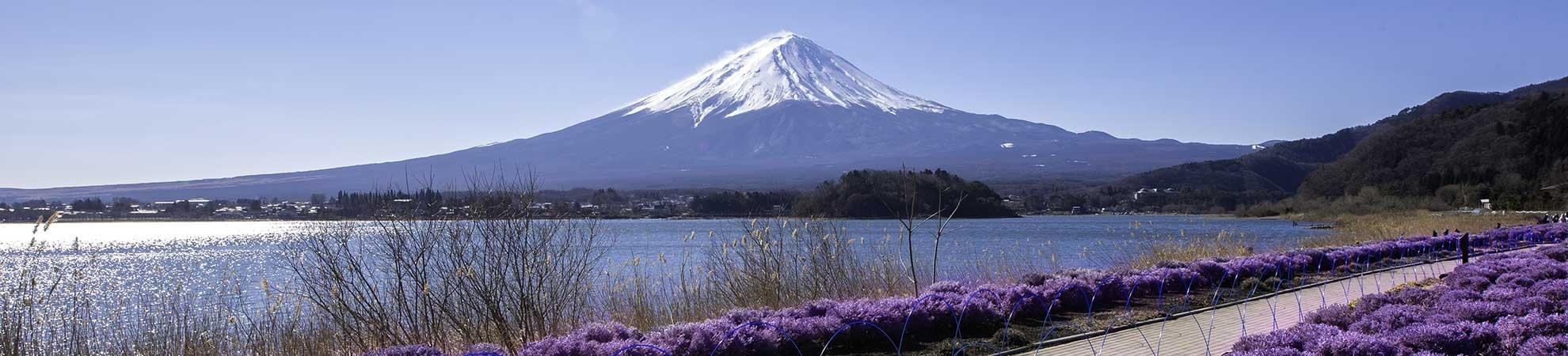 Voyage Mont Fuji