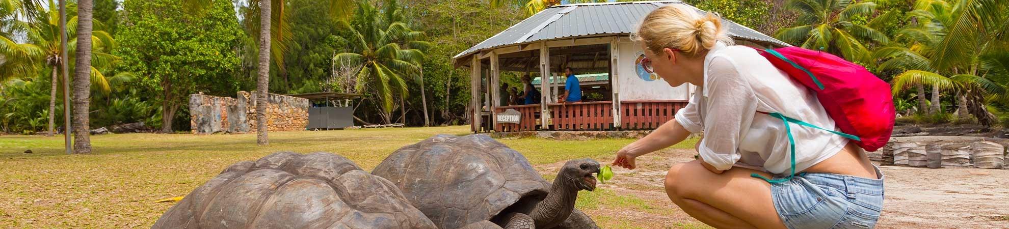 Infos pratiques Seychelles