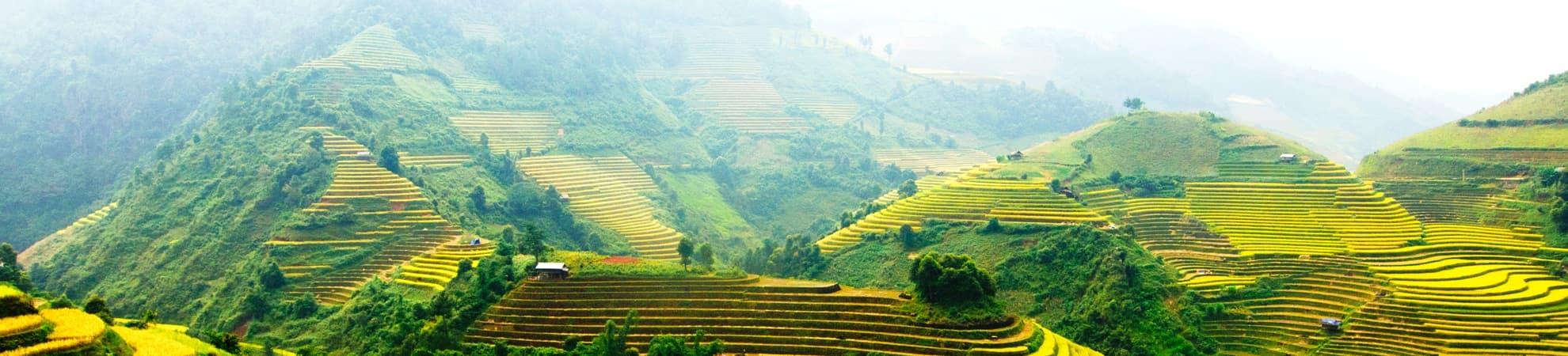 Aller Vietnam