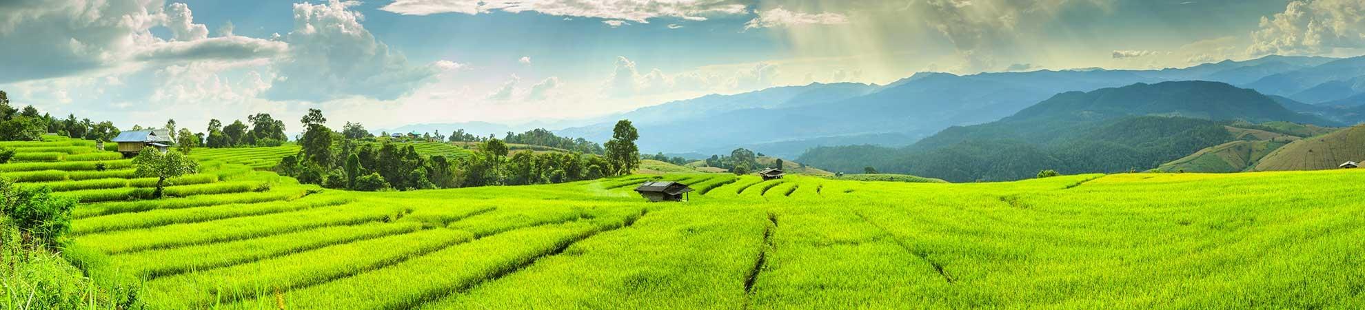 Vietnam Au coeur de la nature