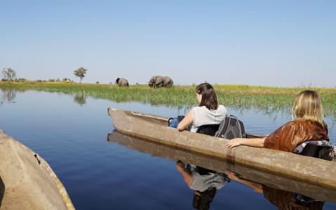 activity Safari Okavango