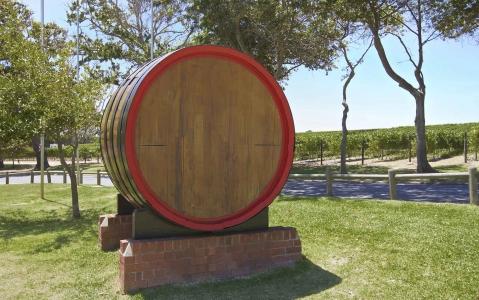activity La route des vins d'Afrique du Sud