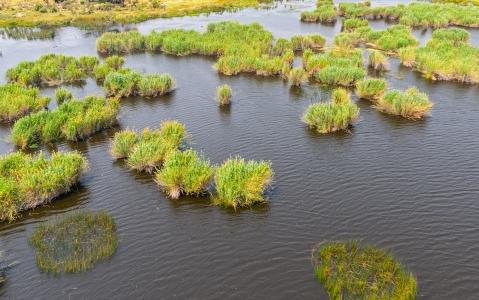 activity Survol du Delta Okavango en Hélicoptère