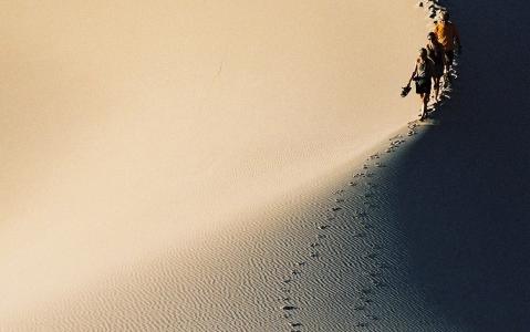activity Balade sur les dunes