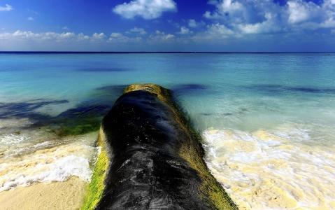 activity Découverte d'Isla Mujeres en catamaran