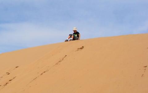 activity Descente en luge des dunes