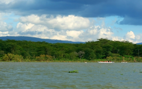 activity Excursion en bateau jusque Crescent Island