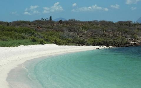 activity Exploration d'Isla Coronado