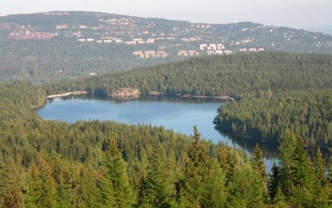 activity Journée de balade dans la forêt d'Oslo Marka