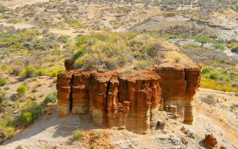 activity Le musée d'Olduvai