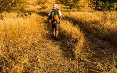 activity Njoro Trek, paysages d'Olduvai