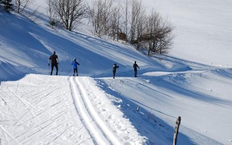 activity Ski de fond en Scandinavie