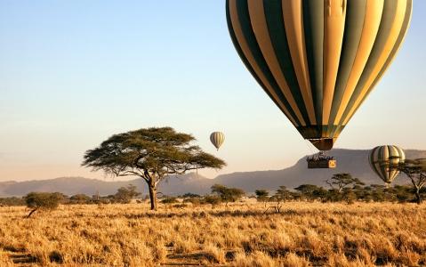 activity Survol en montgolfière au-dessus du Serengeti